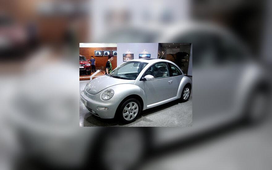 """""""Volkswagen Beetle"""""""