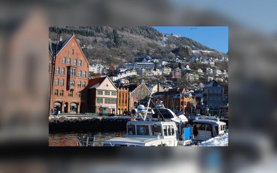 Norvegai vertina medinius namus