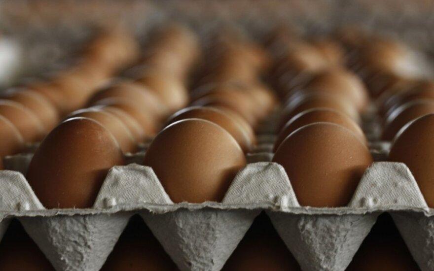 Kiaušinių dėžutė