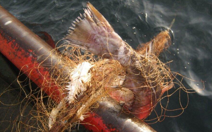 Žvejų užmiršti seni tinklai