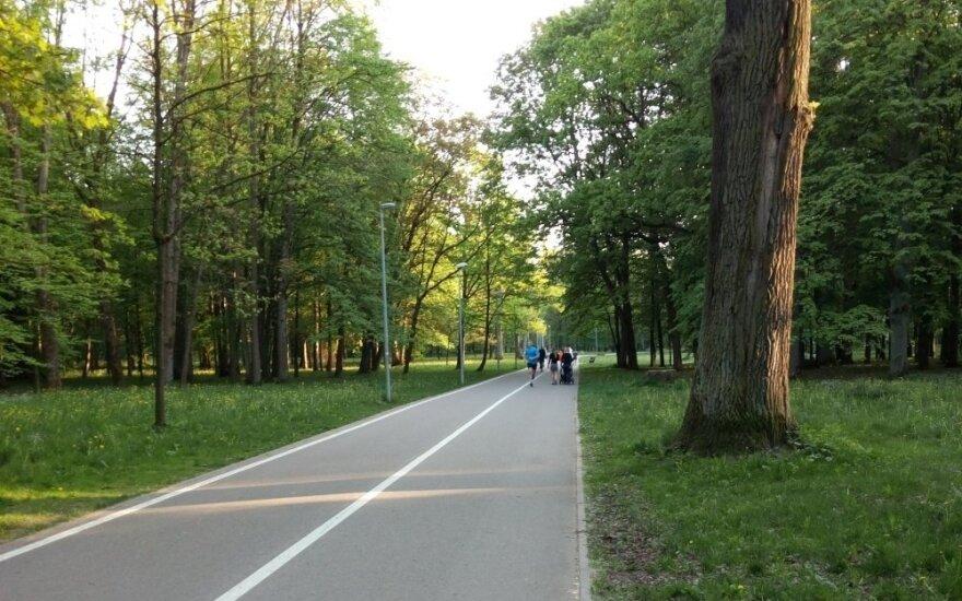 Kaunietį papiktino dviratininkų elgesys parke
