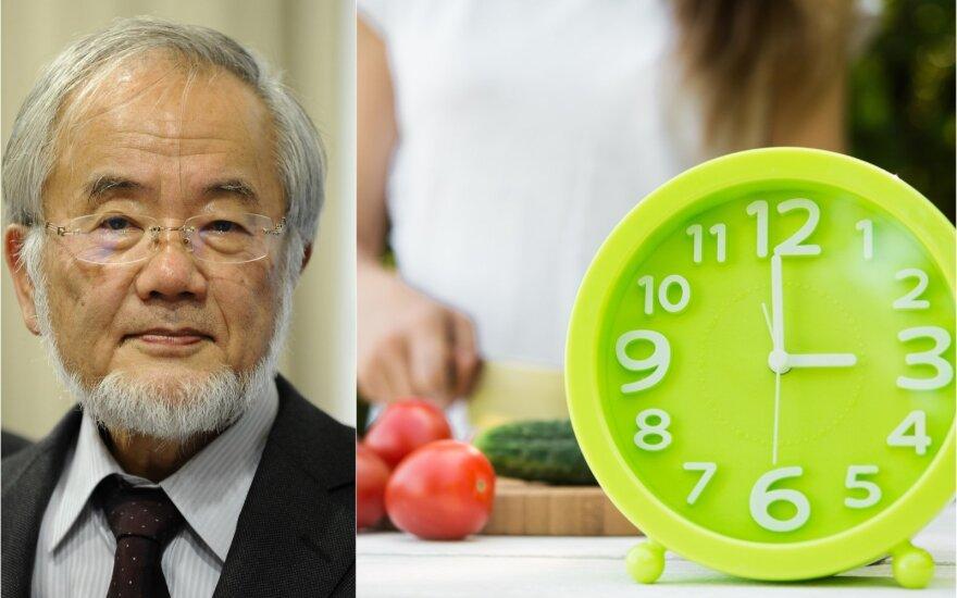 Yoshinori Ohsumi dieta