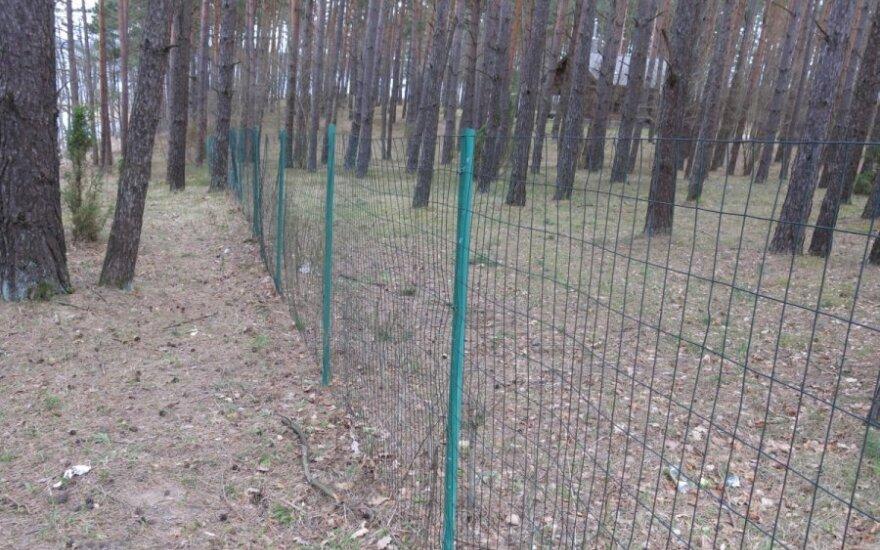 Tvoromis aptverti miškai