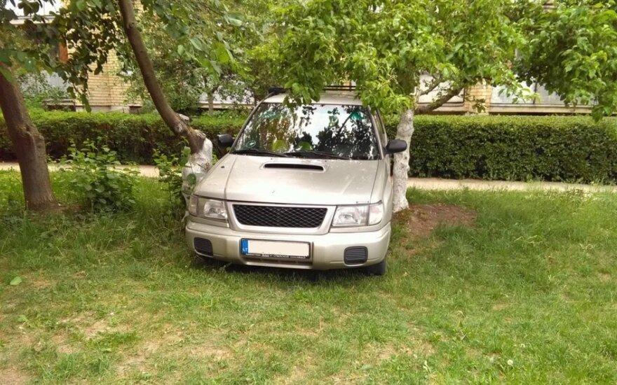 """Girtas kaunietis kieme su """"Subaru Forester"""" įstrigo tarp medžių"""