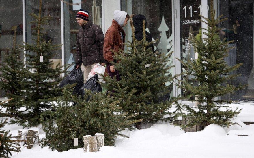 Jau aišku, kokių tikėtis Kalėdų: ką sako klimatologai ir liaudies išmintis