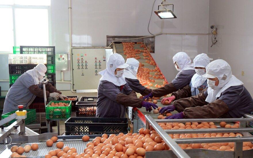 """""""Nissan"""" ir """"Honda"""" dėl koronaviruso protrūkio kol kas neatnaujins gamyklų Kinijoje darbo"""