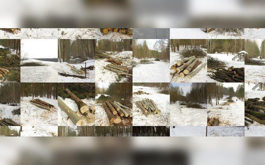 Skaitytojas pasipiktino Vilniuje kertamu Pasakų parku