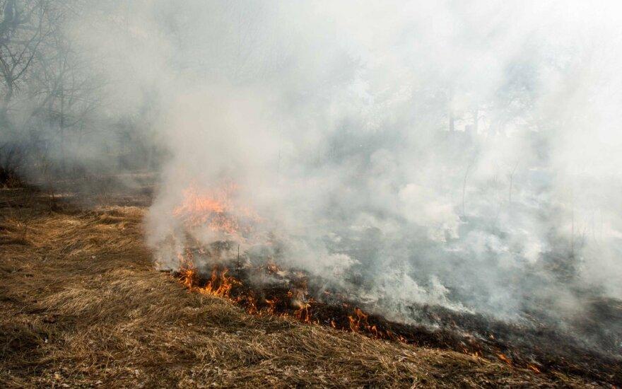 Šylant orams neramiai laukiama žolės gaisrų