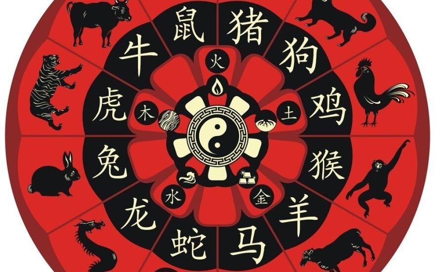 Koks jūsų charakteris pagal kinų horoskopą?