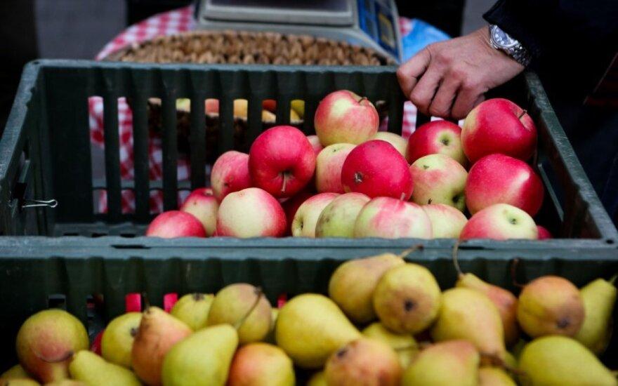 Rekomendacija sodininkams ir daržininkams: ieškokite kitų rinkų