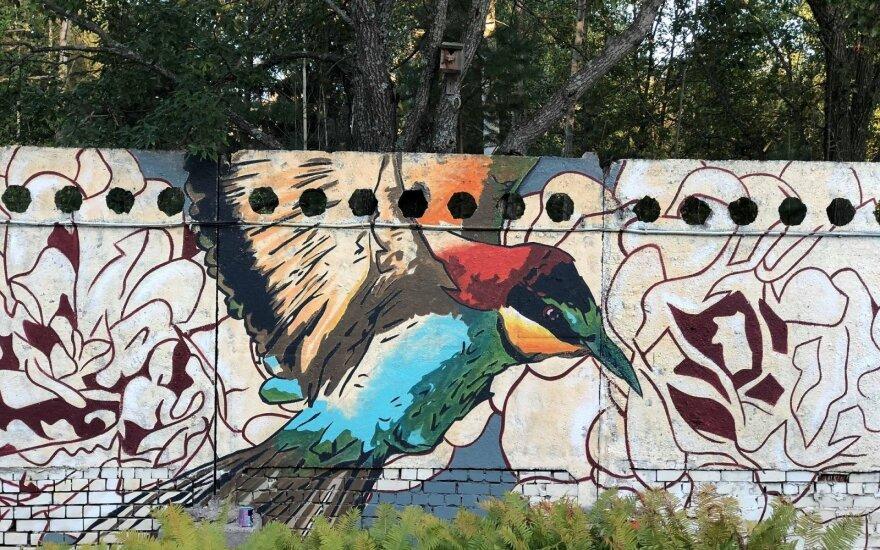 Tapytojas Linas Kaziulionis padovanojo Visagino socialiniams globos namams svajonių paukštį