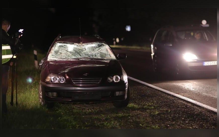Vilniuje prieš pat automobilį į kelią iššokęs briedis neišvengė smūgio