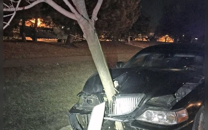 Neblaivios moters automobilis su medžiu