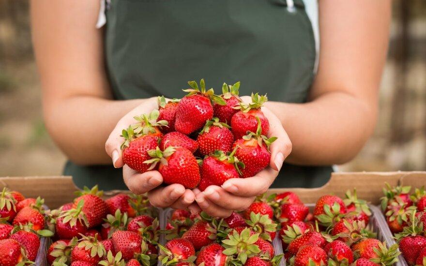 Tyrimas: gyventojai vertina lietuviškų ūkių produkcijos kokybę, bet mano, kad ji – brangi