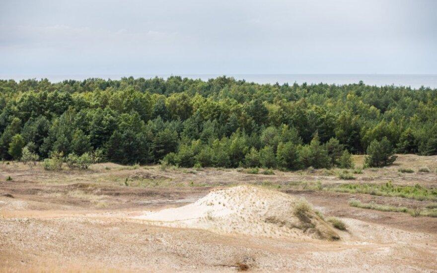 Aplinkos ministerija nori padėti tašką taisant Kuršių nerijos planą