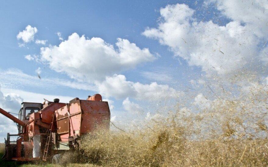 Žemės ūkio bendrovės: lėšos už mokslą mainais į darbą