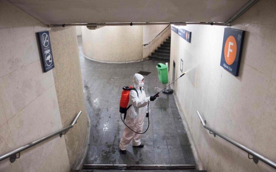 Tarptautinės organizacijos perspėja apie galimą maisto krizę dėl koronaviruso pandemijos