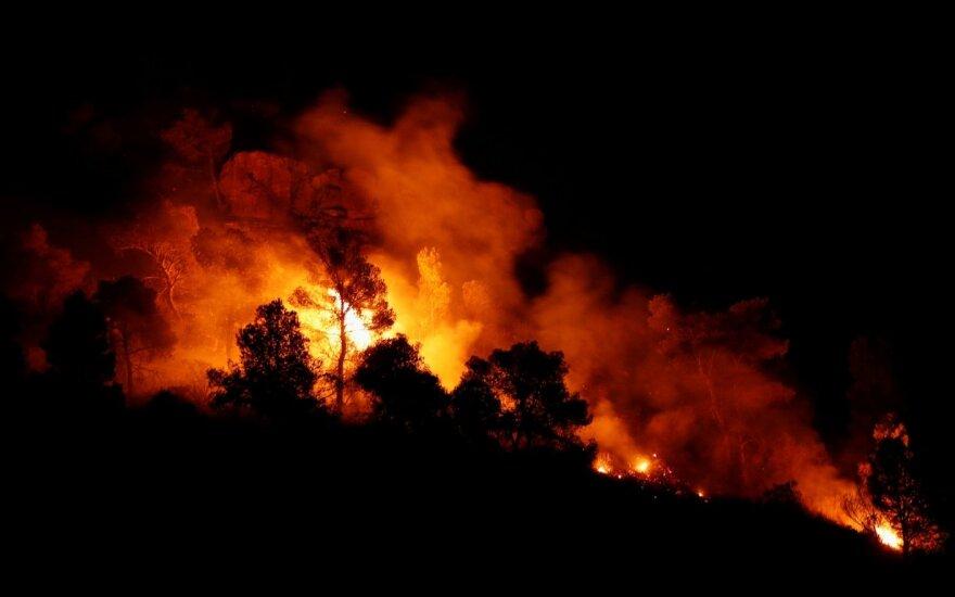 Kanarų salose siaučia miškų gaisras, evakuota tūkstantis žmonių
