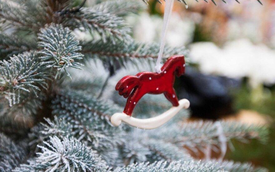 L. Kalpokaitė: Kalėdų dvasios įpučia ir eglės šaka