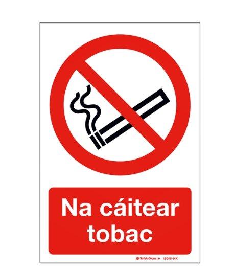 Audrius Valotka. Kalbos kasdienybės. Lietuva – Airija