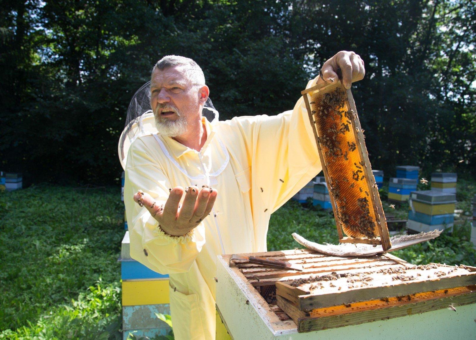 Apgailestauja, kad bičių produktai retai pasitelkiami ...
