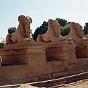 Egiptas_20