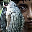 Žuvis ir berniukas