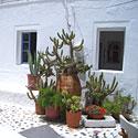 Santorini sala