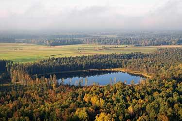 Ežeras tarp Žemaitijos miškų