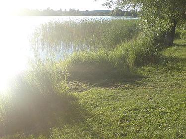 Į ežerą nugarmėjo automobilis