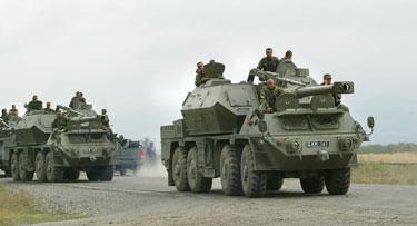 Gruzijos kariai