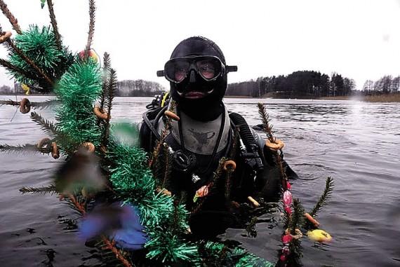 Naujieji ežere: žuvytėms – makaronų girliandos, o narams – šampanas