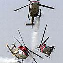Sraigtasparniai