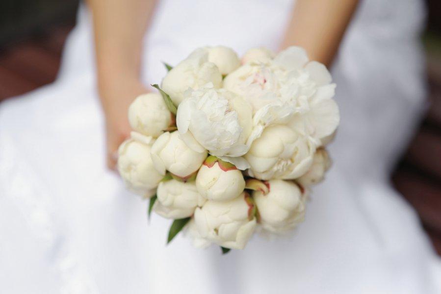 Bij nai vestuv ms delfi gyvenimas for Flowers in season in february