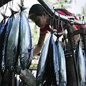 Moteris parduoda žuvį