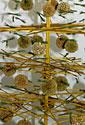 Floristinė stilizuota eglutė_8