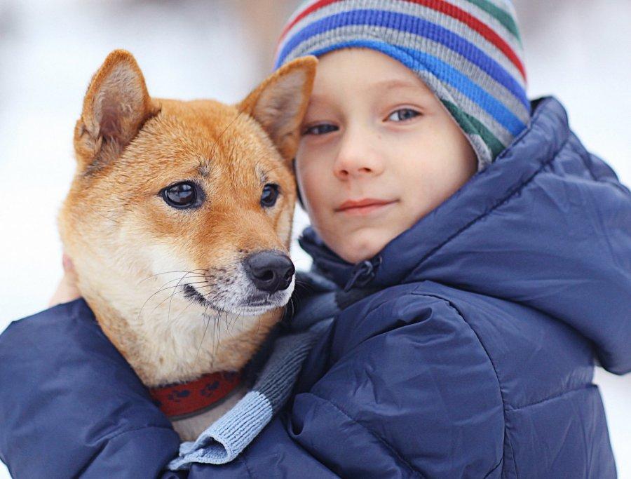 geriausia šunų prekybos strategija