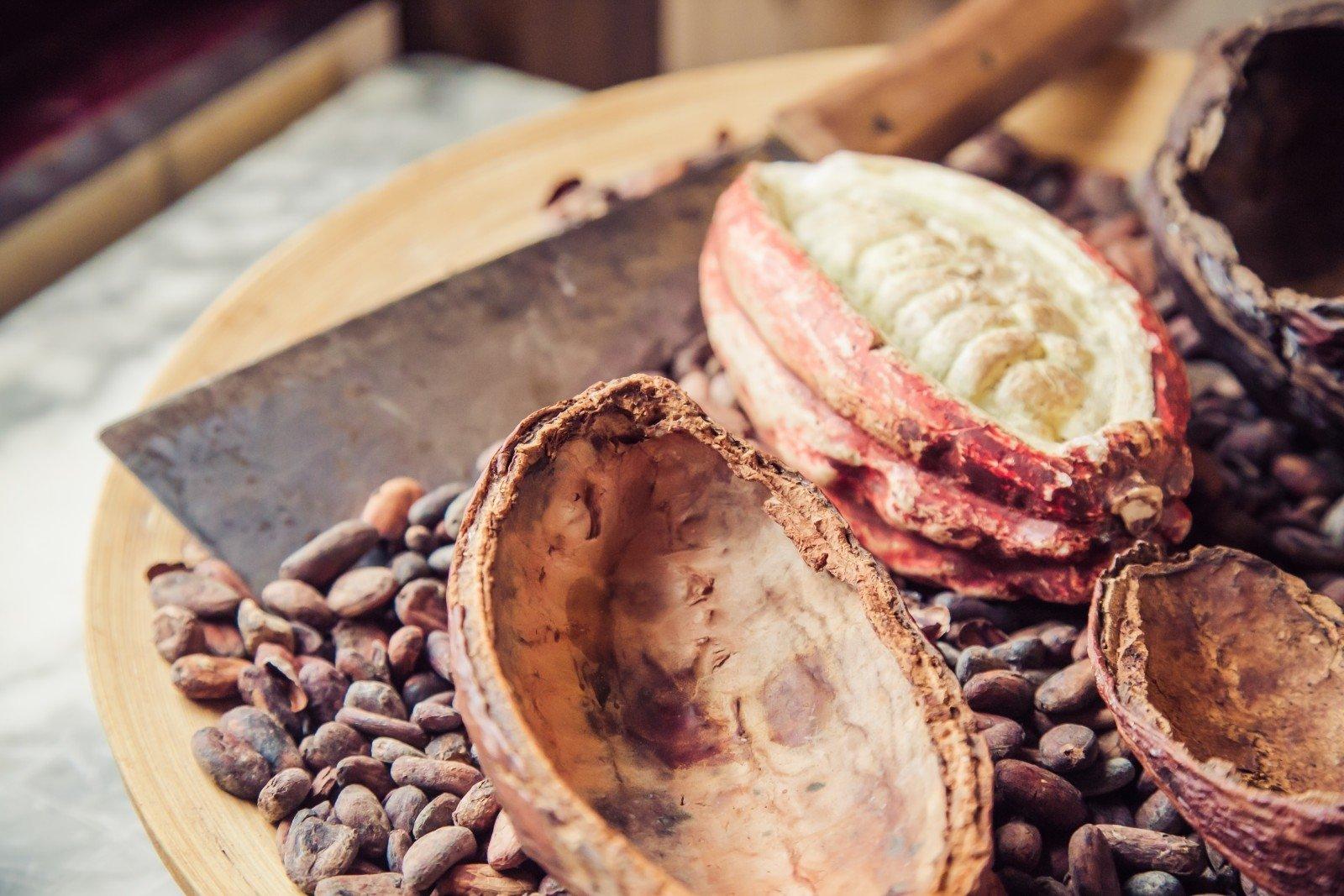kakavos pupelių širdies sveikata