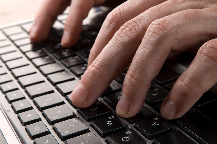 Lithuanians' trust in e-government services growing - EN DELFI