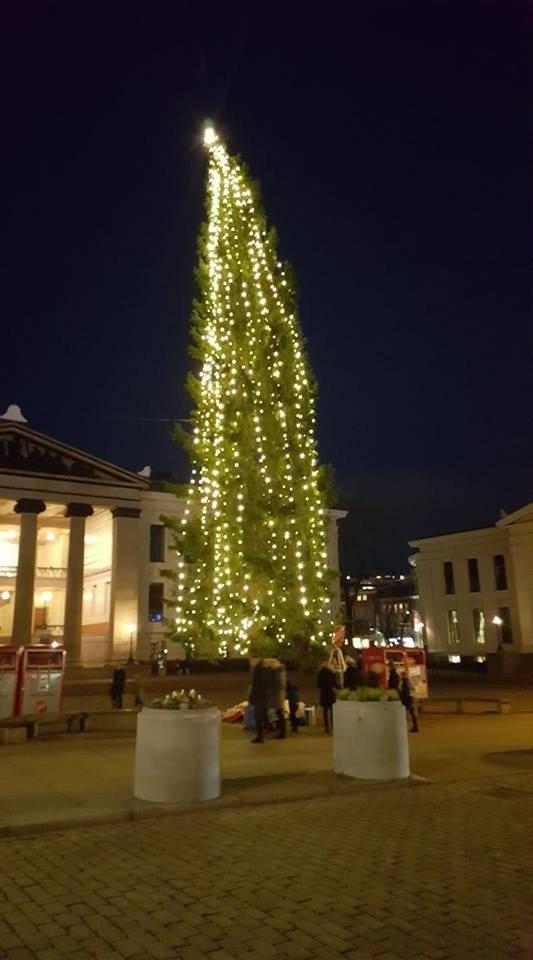 Oslo Kalėdų eglutė