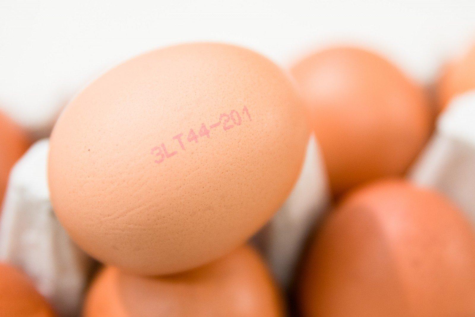 kodėl varpos yra daugiau nei kiaušinių)